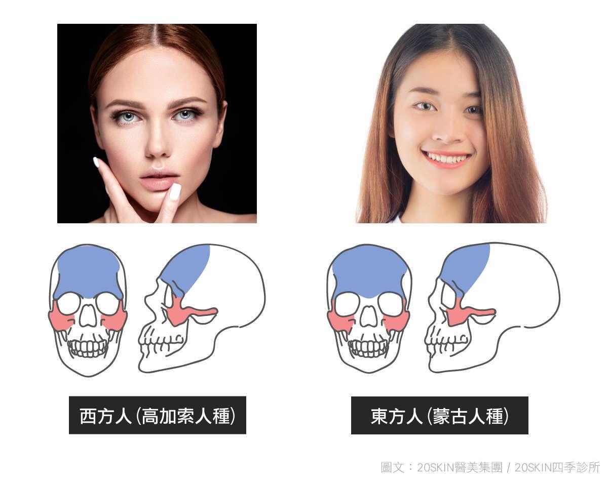 西方人與東方人臉型比較